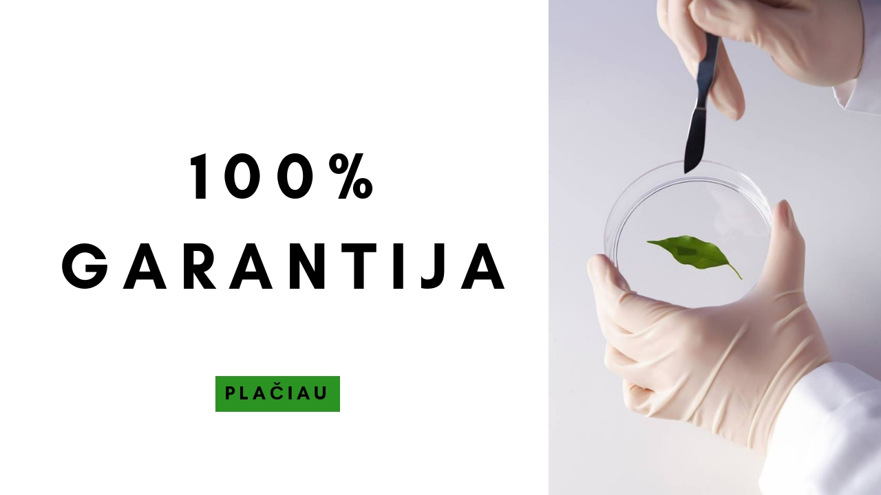 100-garantija|NEMOKAMA KONSULTACIJA